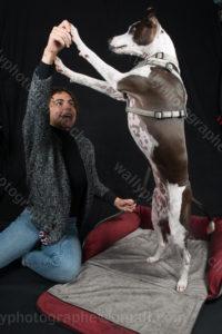 234 Dog City © Studio ITA 0412